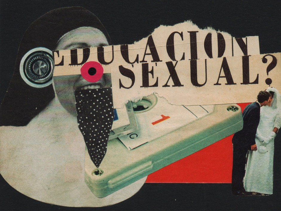 An art collage about sexual education