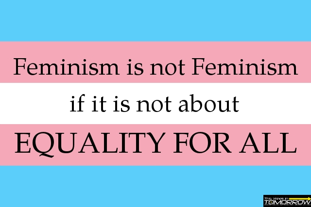 Picture of quote on top of pink and blue trans flag that says Feminism is not Feminism if it is not all about equality for all.