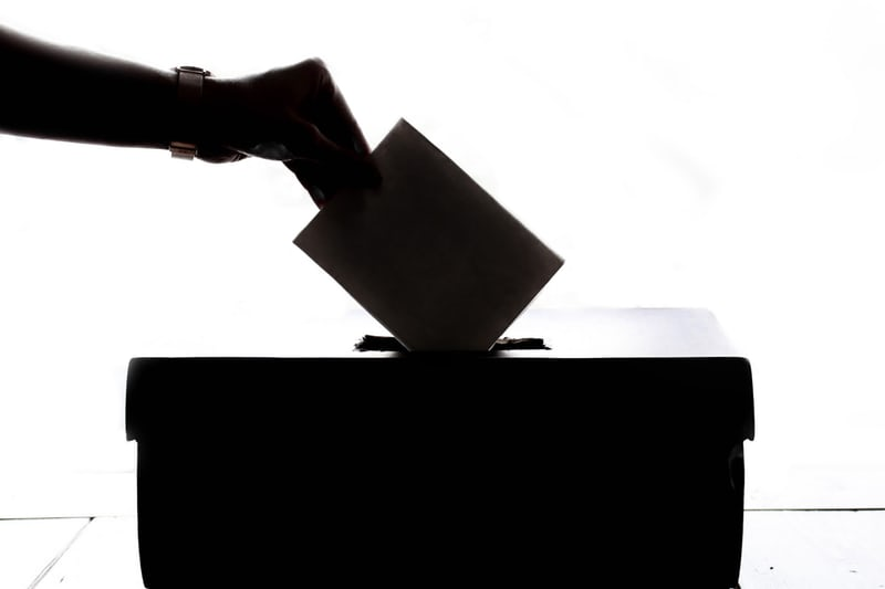 white background with a silhouette of someone putting a vote in a box